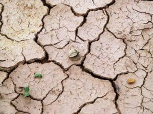 sol aride désert